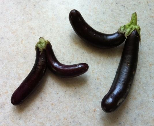 eggplanttwins