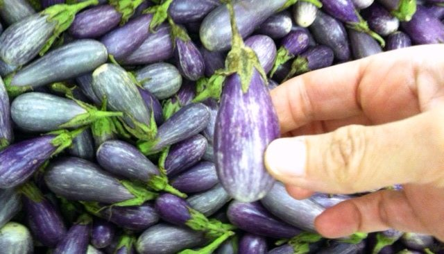 Once Upon a Time, a Fairy (Eggplant) Tale...