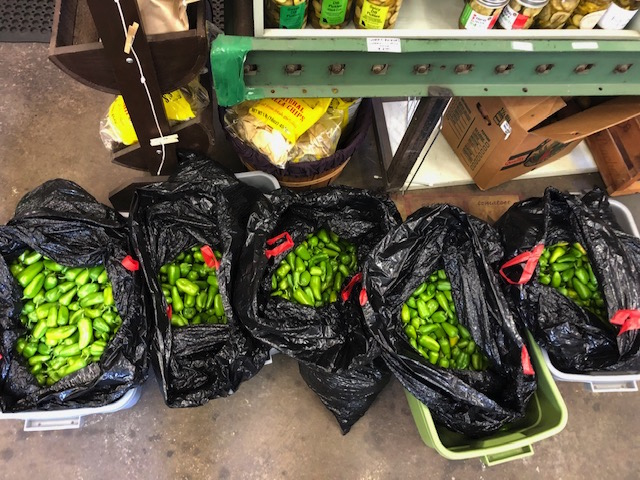 """""""Green"""" Lunchbox Peppers"""
