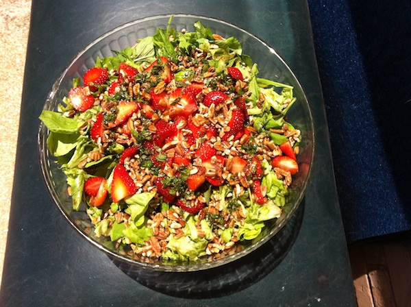 Green Salad with Strawberries and Lemon Balm Dressing
